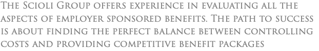 The Scioli Group offers experience in evaluating all the aspects of employer sponsored benefits. The path to success is about finding the perfect balance between controlling costs and providing competitive benefit packages